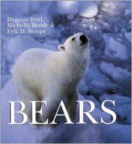 bearsdagmar